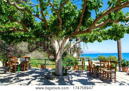 tables in the tavern in the shade under a tree in the background the is a sea