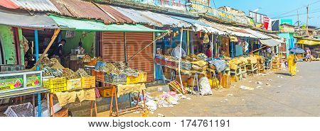 Panorama Of Manning Market