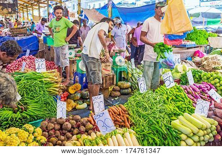 The Fresh Vegetables In Pettah