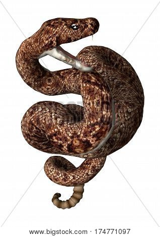 3D rendering of a rattlesnake isolated on white background poster