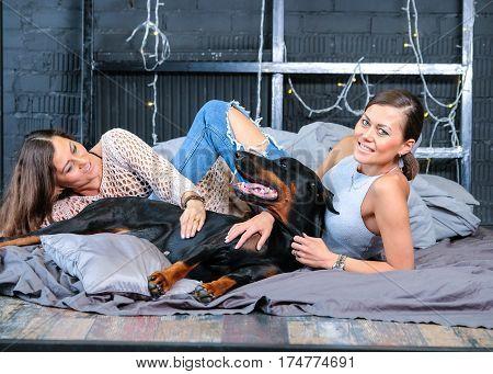 Pretty twins in bed with big black doberman dog