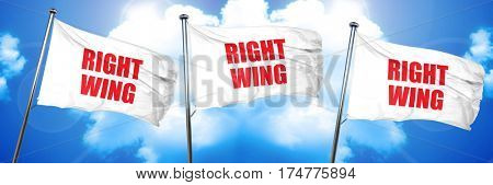 right wing, 3D rendering, triple flags