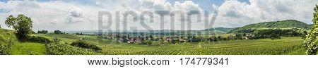 Vineyard Landscape In Region Alsace Near Village Of Barr