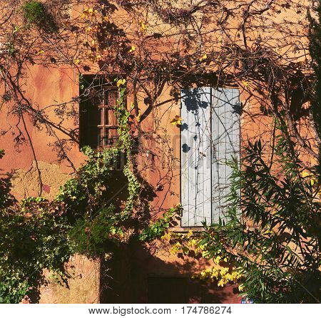 Old building covered with a yellowed ivy. Small window and obsolete white door. Retro styled. Roussillon village. France