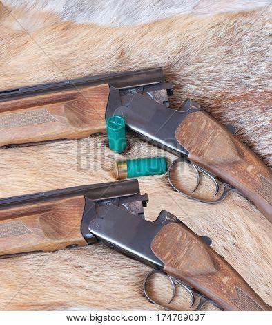 hunting smooth-bore gun lies on Fox skin