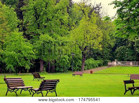 Green garden for relaxation and rest. Peace and wisdom bench trees