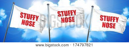 stuffy nose, 3D rendering, triple flags