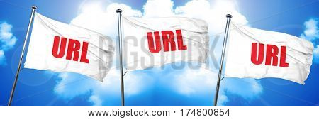 url, 3D rendering, triple flags