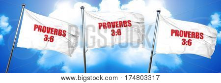 proverbs 3 6, 3D rendering, triple flags