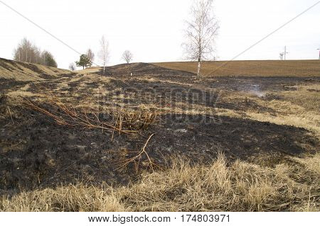 pictured burning dry grass at the spring field