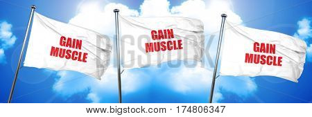 gain muscle, 3D rendering, triple flags