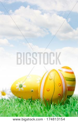 Easter Eggs With Daisy And Blue Sky