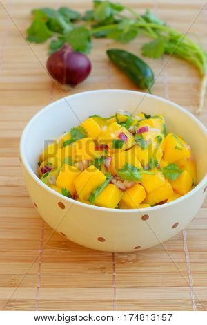 Homemade peach salsa made from cubed fresh peach with red onion, jalapeno and coriander leaves