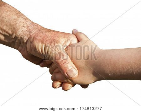 Grandfather and granddaughter holding hands on white background