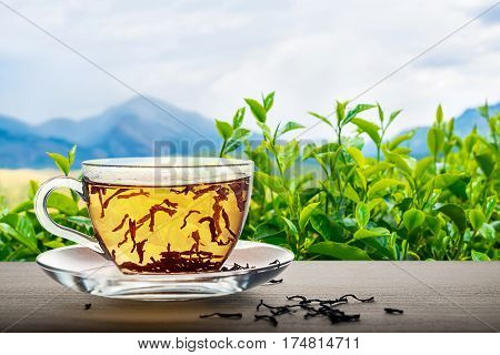 Close Up Of Tea Cup On Wooden Over Indian Landscape Background With Green Leaves, Mountains, Concept
