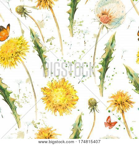 Watercolor seamless pattern with spring flowers yellow and white dandelions, butterfly. Natural hand painted floral watercolor illustration on white background