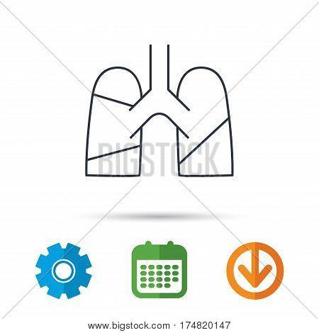 Lungs icon. Transplantation organ sign. Pulmology symbol. Calendar, cogwheel and download arrow signs. Colored flat web icons. Vector
