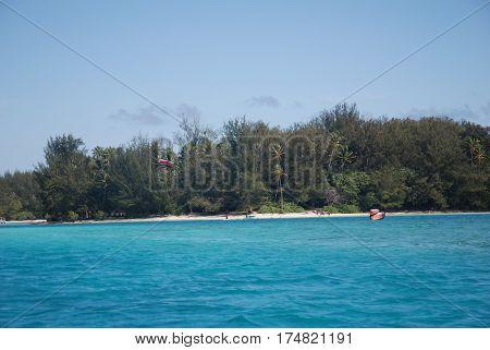 Transparent Sea Bora Bora, French Polynesia. Palm trees and beach.