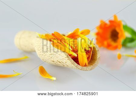 Marigold petals in wooden scoop on light background