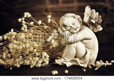 Angel figurine and dry flowers on dark wooden background