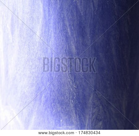 Close up palm wax structure background with gradient