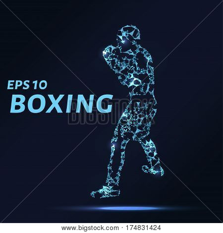 Boxer Consists Of Points, Lines And Triangles. The Polygon Shape In The Form Of A Silhouette Of A Bo
