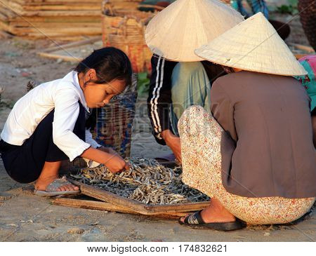 Mui Ne, Vietnam - Feb 13, 2009: Vietnamese Women Sort Fish For The Famous Fish Sauce Nouc-mam. Extra