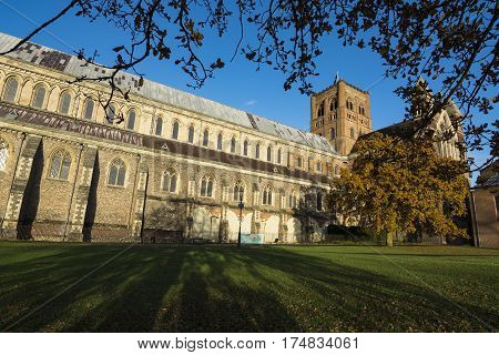 St Albans cathedral and grounds in golden sunlight