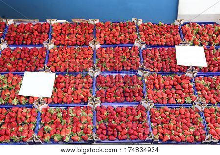 Grocery With So Many Boxes With Red Ripe Strawberries
