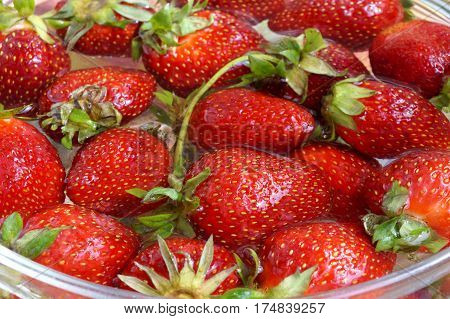 Fresh crop of strawberries  from the Russian giving in capacity with water