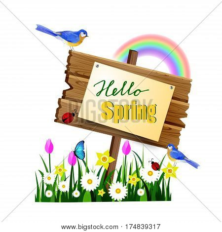 Hello spring wooden board with pined paper on a lawn with flowers butterflyes rainbow and ladybugs bluebirds vector