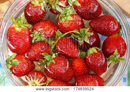 Fresh crop of strawberry from the Russian giving in capacity with water