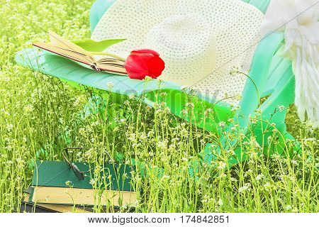 Relax in the spring garden with a book on a sunny day on a green lawn close-up
