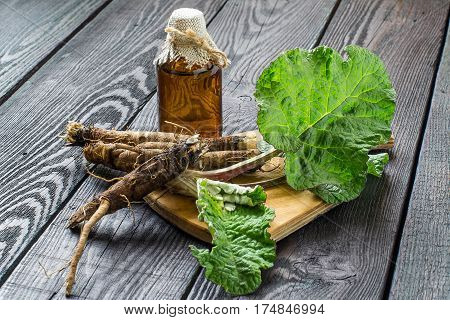 Medicinal plant burdock (Arctium lappa). The roots and leaves of burdock burdock oil in bottle on wooden background. It is used for the treatment and care of hair