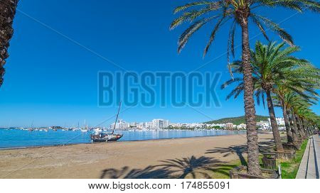 Mid morning sun, along beach sees an abandoned sailboat.  Rows of palm trees line water's edge in Ibiza, St Antoni de Portmany Balearic Islands, Spain.