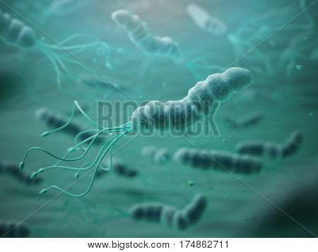 Helicobacter pylori in microscope.Bactreiias. 3d illustration