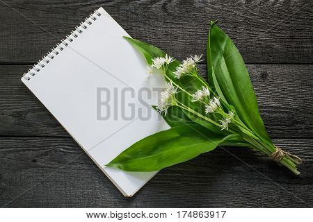 Medicinal plant ramson (allium ursinum) and notebook to write recipes and methods of application. Ramson used in herbal medicine edible plant nectariferous and is used in horticulture
