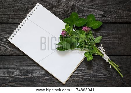 Medicinal plant Red clover (Trifolium pratense) and notebook to write recipes and methods of application. Used in herbal medicine cooking to animal feed honey plant