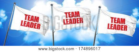 team leader, 3D rendering, triple flags
