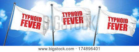 typhoid fever, 3D rendering, triple flags