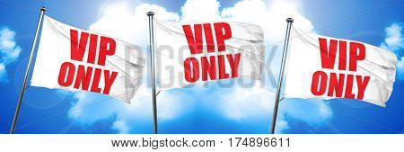 vip only, 3D rendering, triple flags