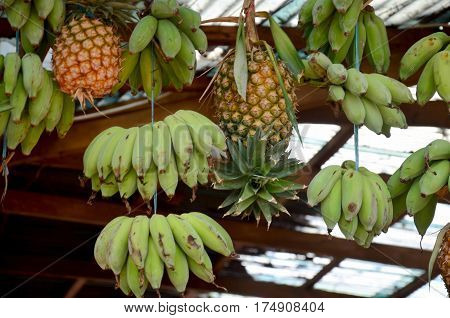 Pineapples and Cultivated banana hanging in Greengrocery or Vegetables and Fruit Shop at market in Pakse Champasak Laos.