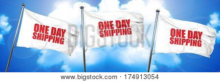 one day shipping, 3D rendering, triple flags