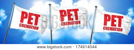 pet cremation, 3D rendering, triple flags
