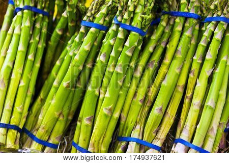 Fresh and green asparagus tied with blue ribbons.