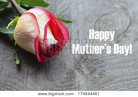 Happy Mother's Day.Rose on old wooden background. Mother's Day greeting card. Selective focus.