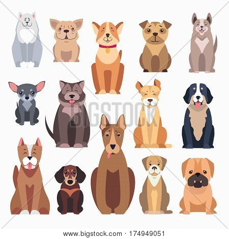 Different kinds of dog breeds on white. Distinguished by size, form of head, tails and noses, muzzles, jaws and ears. Happy and friendly dogs presented in cartoon style on vector illustration.