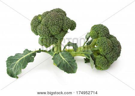 fresh ripe cabbage isolated on white background.