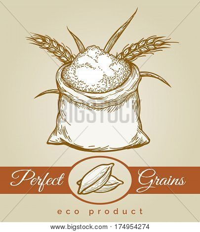 Eco grains product. Hand drawn sack full of grain or flour and bunche of wheat ears sketch vector illustration