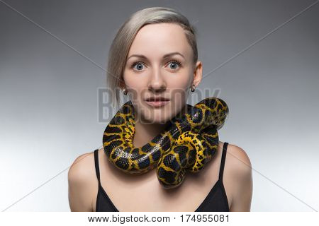 Woman with anaconda on her neck on gray background